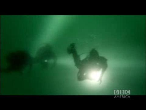 Sea Monster Strikes