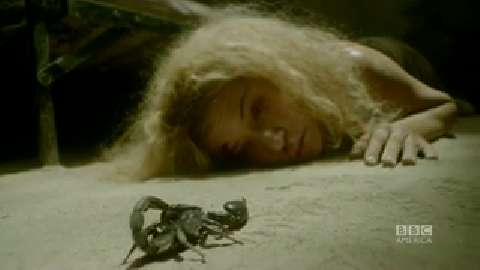 'Orphan Black's' Diva Scorpion